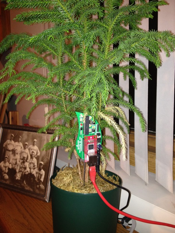 Botanicalls 3