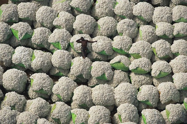 7. Worker Resting on Bales of Cotton, Ivory Coast
