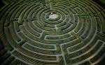 The largest plant maze in the world, at Reignac-sur-Indre, Indre-et-Loire Department, France