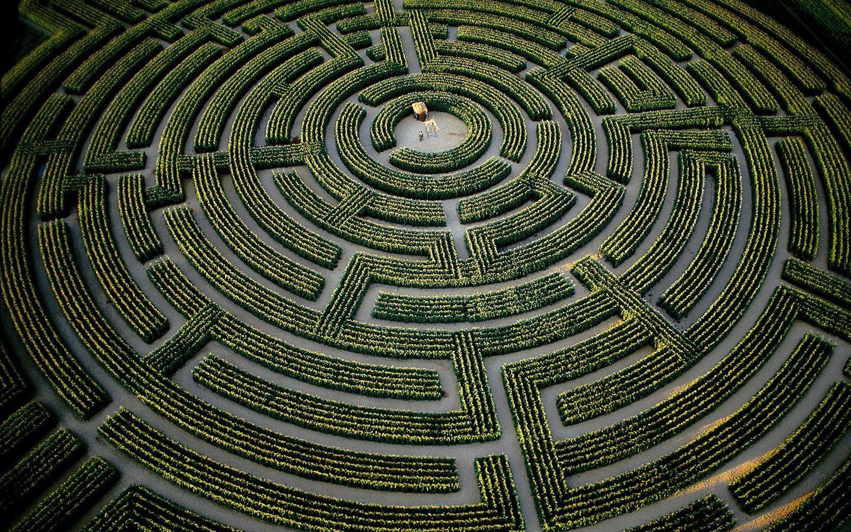 The largest plant maze in the world, at Reignac-sur-Indre, Indre-et-Loire Department, France