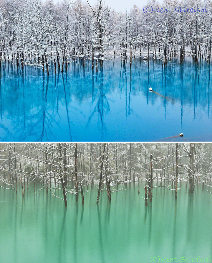 Color Changing Pond – Land of the Rising Sun