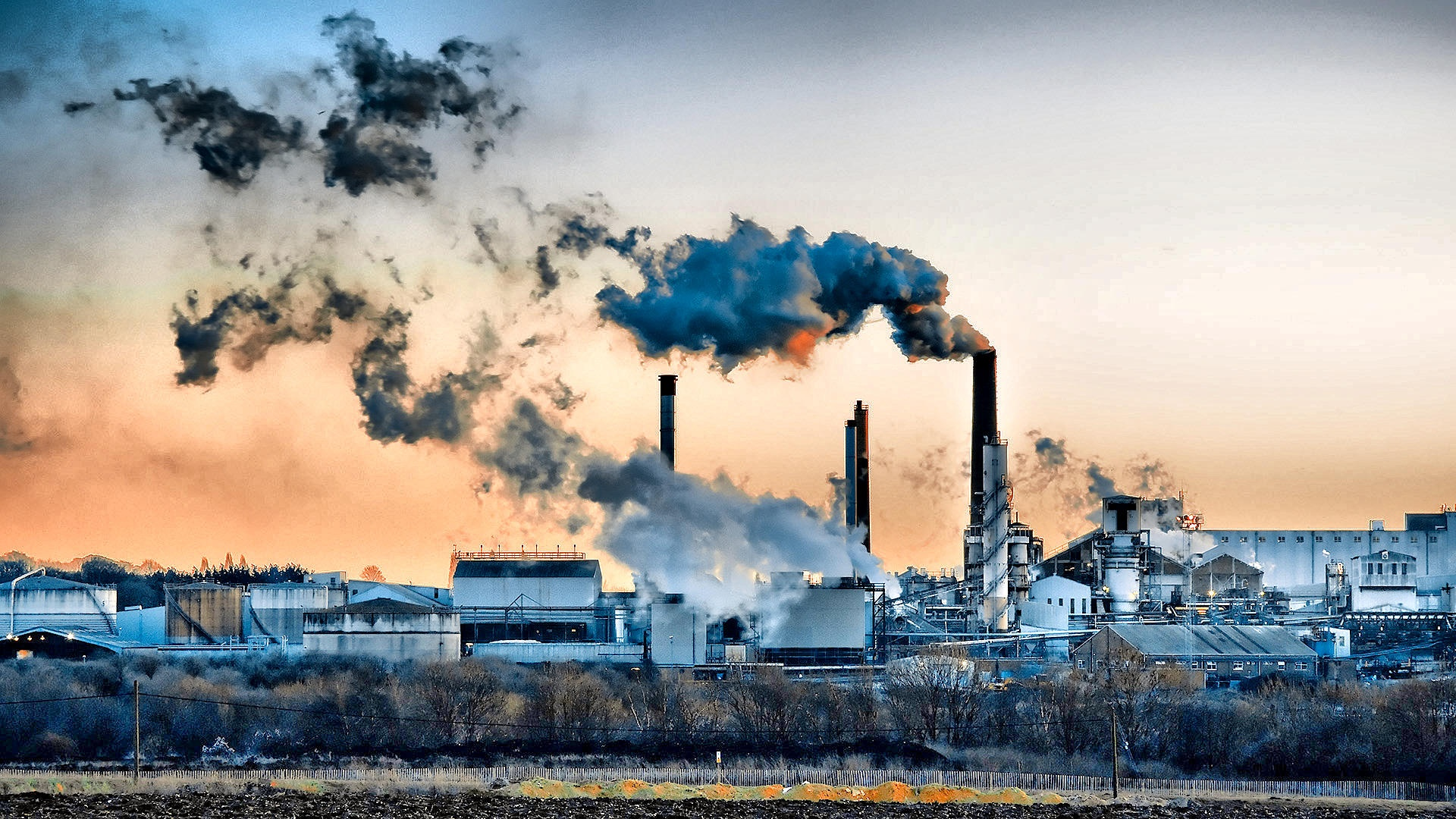environmental pollution by cars essay Free essay: environmental pollution environmental pollution automobiles like these are around the world everyday, and their exhaust destroys our air.
