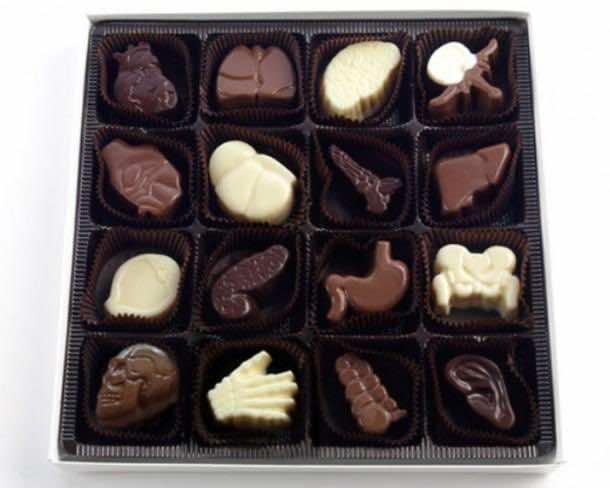 18. Organ Chocolates