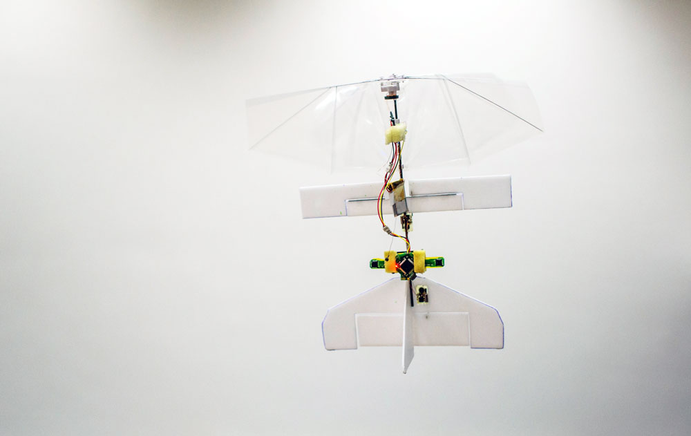 Fully Autonomous Flapping Wing Micro Drone Is Here!