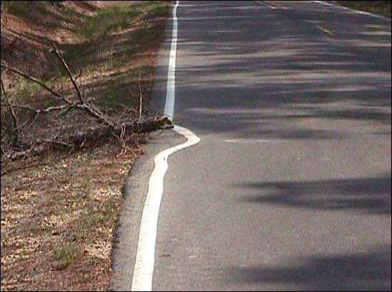Road Paint fail