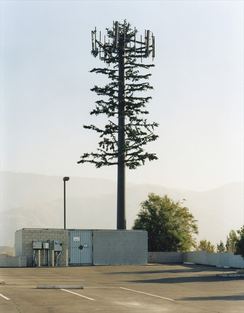 camouflaged_cell_towers (18)