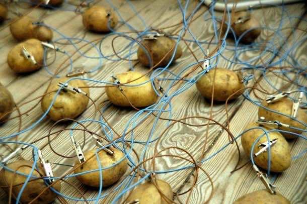 potato_power