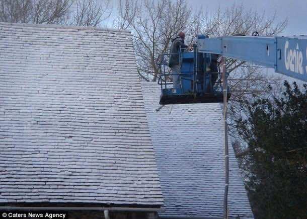 snowbusiness (3)