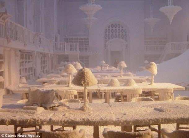 snowbusiness (5)
