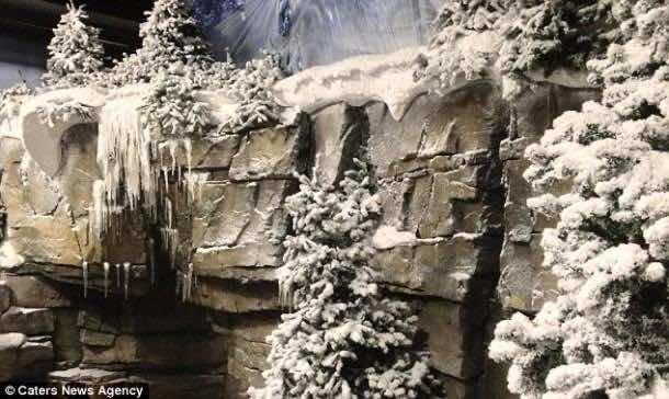 snowbusiness (6)