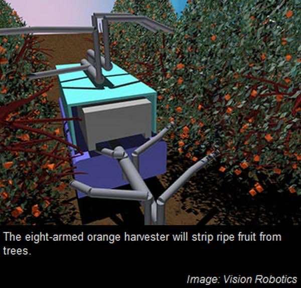 Robots at farm 4