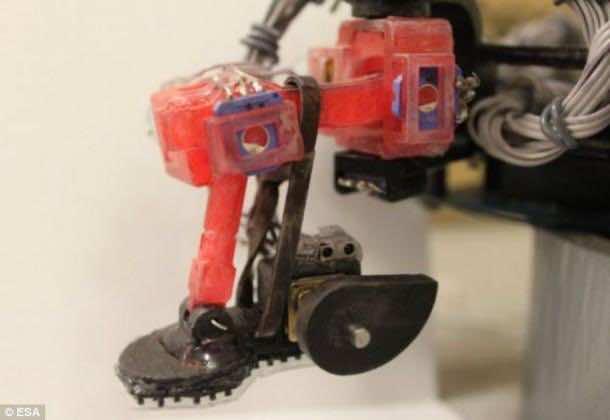 gecko_robot (3)