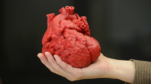 3D-printed_heart (1)
