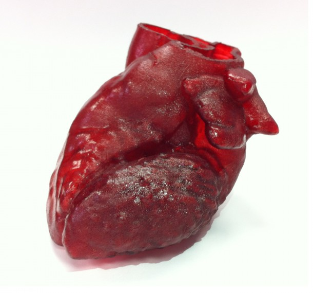 3D-printed_heart (2)