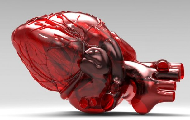 3D-printed_heart (5)