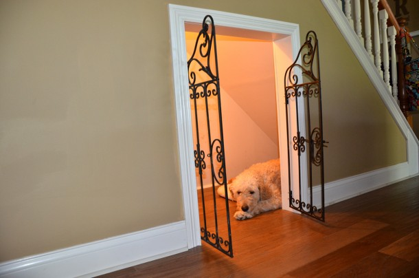 6. Dog under the stairs!