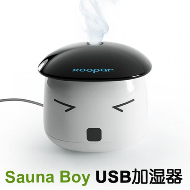 Sauna Boy Humidifier 4