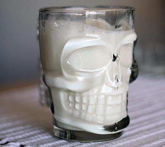 Kikkerland Skull Stein