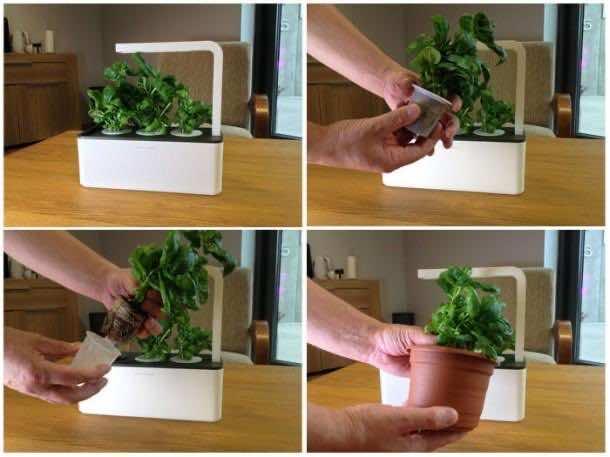 Smart Herb Garden 4