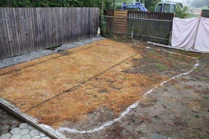 backyard_project (1)