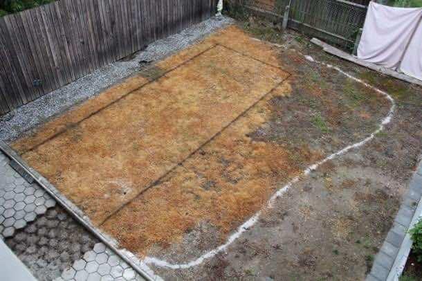 backyard_project (2)