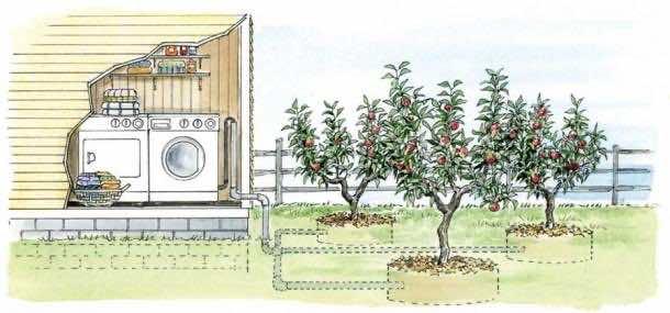 3. Reusing Water