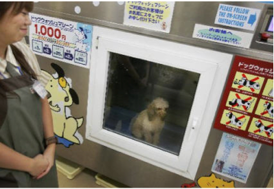 Dog bath vending machine