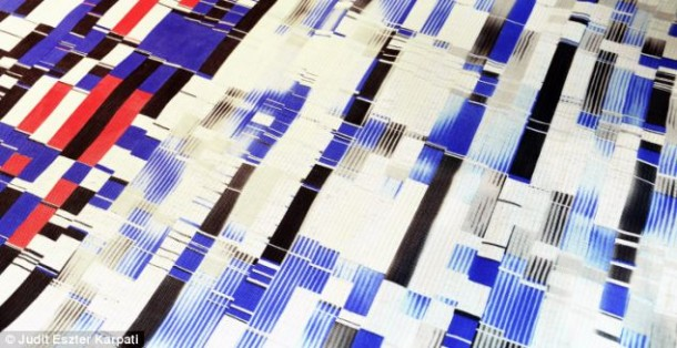 chameleon_fabric (5)