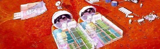 Mars_plant_experiment (2)