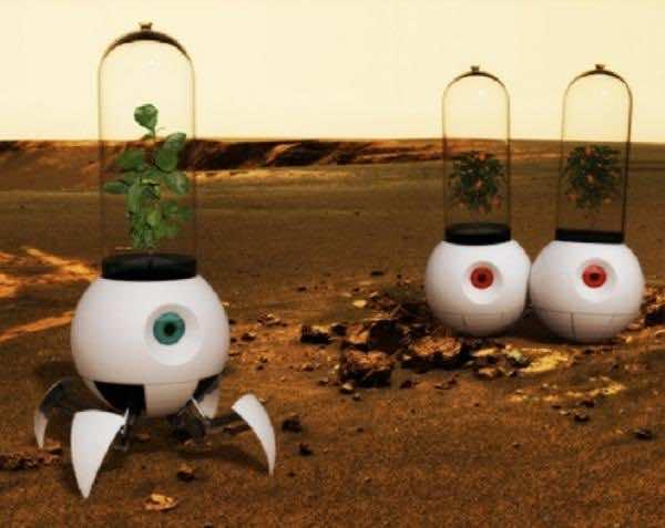 mars_plant_experiment (4)