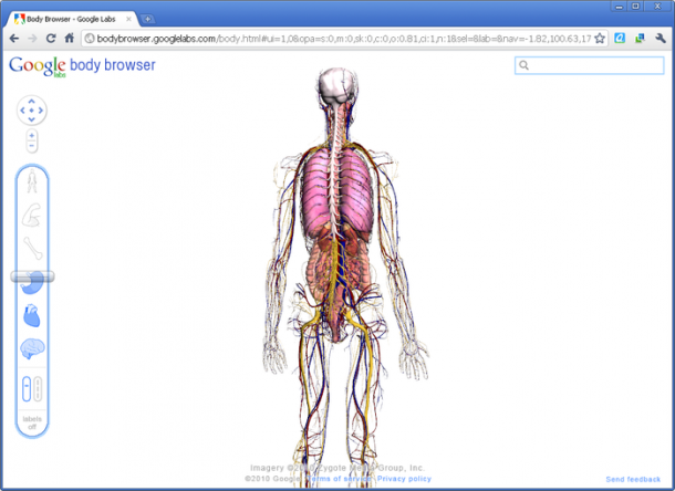 10. Google Body