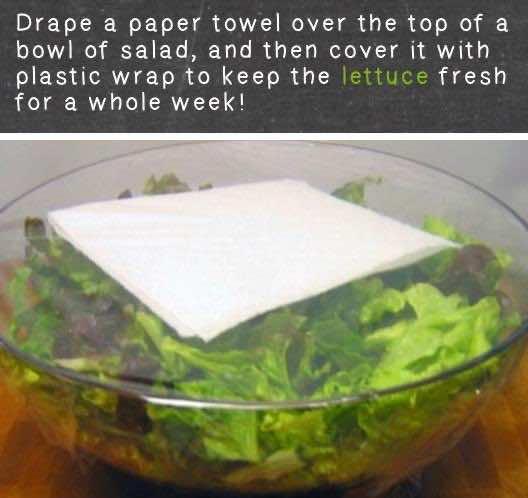15. Keep Lettuce Fresh