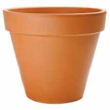 16. Keeps terracotta pots from oxidizing