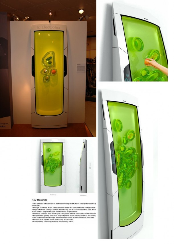 9. The Fridge of the Future