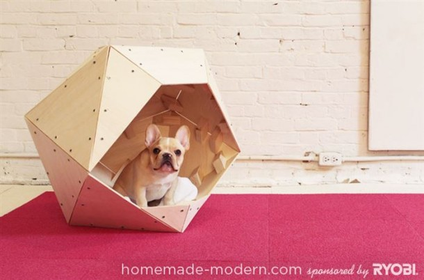 Amazing Doghouses