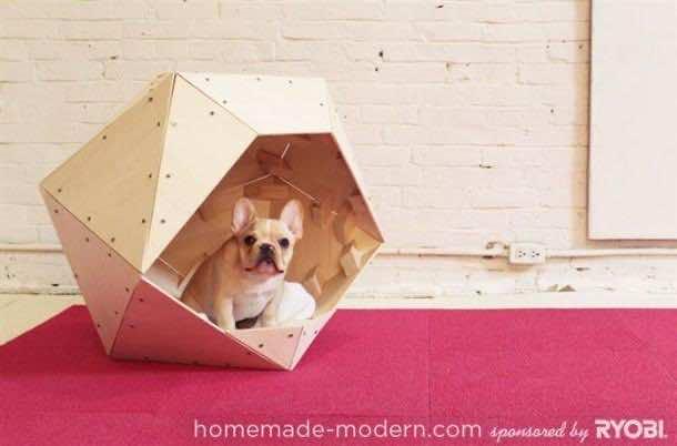 Amazing Doghouses