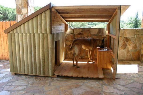 Amazing Doghouses 2
