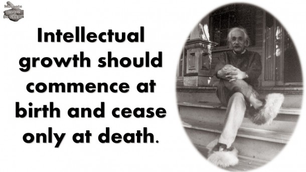 Einstein Quotes 24