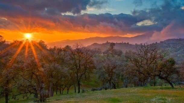 Caliente Sunset