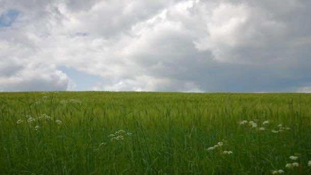 HD landscape photographs (5)