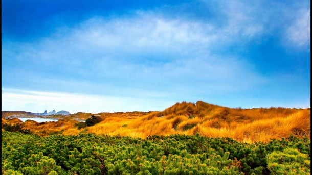 Landscape pictures (11)