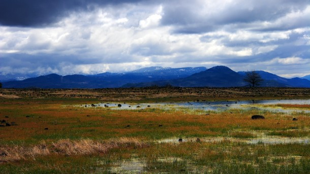 Landscape pictures (13)