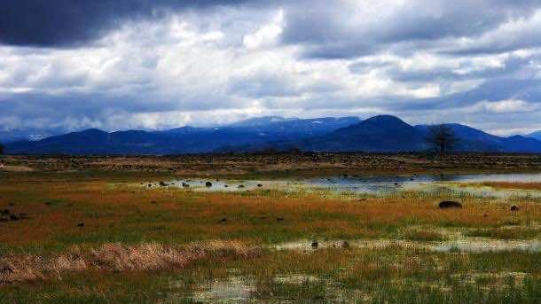 Landscape pictures (15)