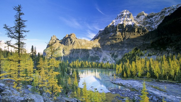 Yoho National Park and the larch valley, British Columbia, Canada.
