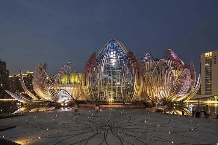 Lotus-Building-8