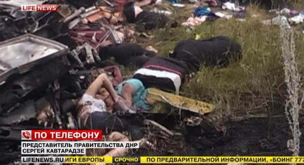 Malaysian Airlines MH-17 Crash Pictures-11