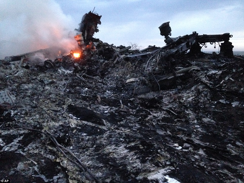 Live: Malaysian Airlines MH 17 Crash Images