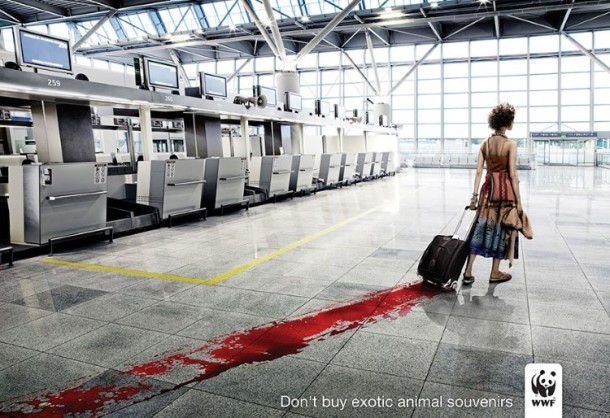 Powerful Ads (27)