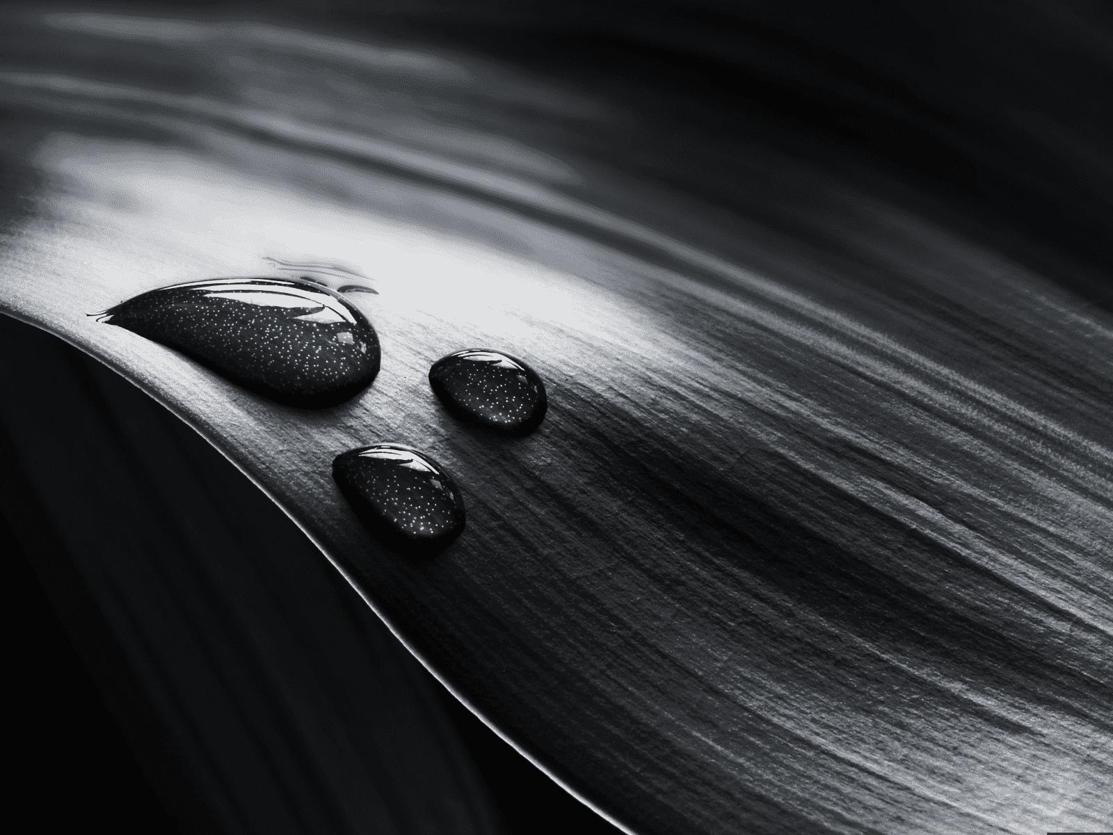 black and white wallpaper 2