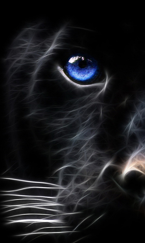 ... Black Tiger Mobile Phone Wallpaper C7b6b6588ebbf0d8812a2b1ef8e888a8 ...